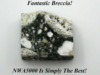 🌙  Legendary NWA 5000 Lunar Meteorite Moon Rock .630 Grams - No Reserve!