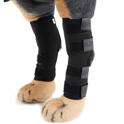US 2Pc Pet Knee Support Brace Dog Hock Protector Therapeutic Heal Dogs Rear Leg