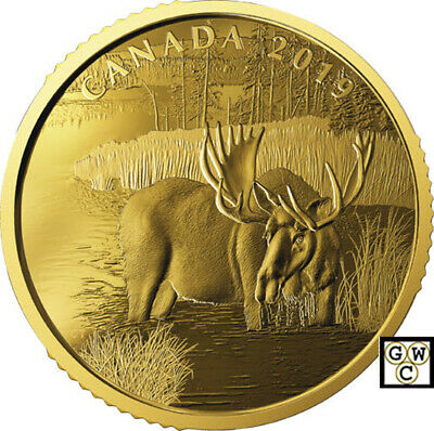 2019 'Canadian Moose' Proof $200 Gold Coin 1oz .99999 Fine (18704) (NT)