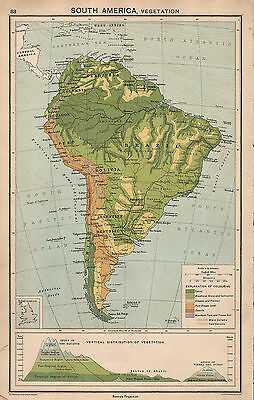 1931 Map ~ South America Vegetation Land Heights Vertical Distribution Mountains
