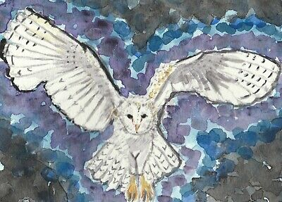Flying owl bird double ACEO original watercolor painting 3.5 by 5