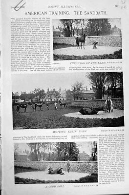 Old Antique Print 1896 Horse Racing Sport American Training Docker Stand 19th