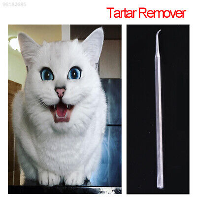 4183 Tartar Calculus Remover Scraper Dental Dog Pet Supply Scaler Tooth Oral Hyg