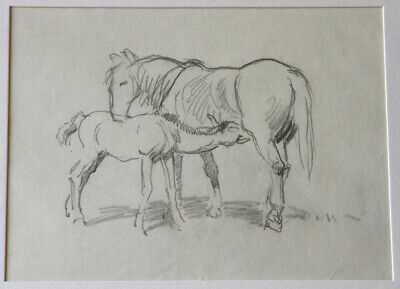 John Murray Thomson – Mare and Foal – Horse Horses Equine Pencil Drawing