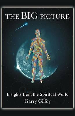 The Big Picture: Insights from the Spiritual World by Garry Gilfoy (English) Pap