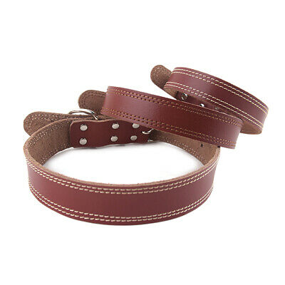 Adjustable Safety Collar Solid Soft PU Leather Neckband for Cat Puppy Pet Dog