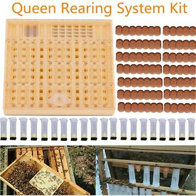 Cell Cups Queen Rearing Box Cupkit Complete Bee System Beekeeping Case Full kit