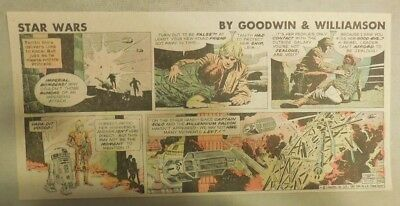 Star Wars Sunday Page by Al Williamson from 11/15/1981 Third Page Size!