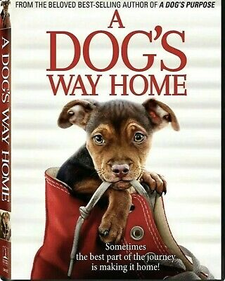 A Dog's Way Home (DVD,2019) NEW-Drama, Family- FREE Fast Shipping 🚀