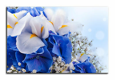 Large Wall Art Canvas Picture Print of Blue White Iris Flowers Framed
