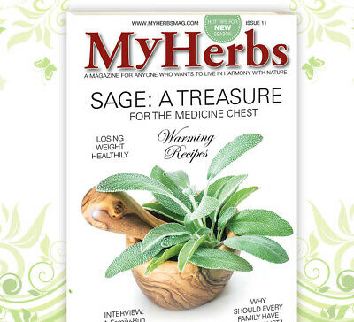 My Herbs Issue 11 2019 Sage - Warming Recipes Losing Weight Heathily - FREE SHIP