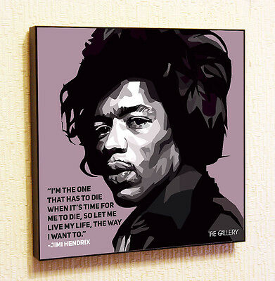 Jimi Hendrix Both Sides Of The Sky Art Canvas Poster 8x8 24x24 inch