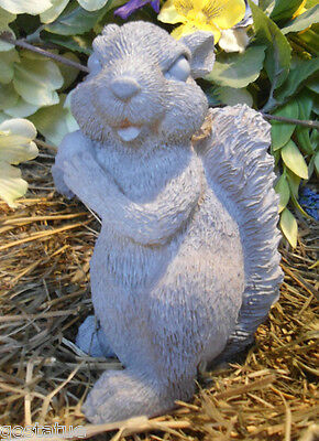 Latex squirrel statue mold plaster concrete mould