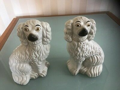 Victorian Pair of Staffordshire Comforter Spaniels c1860 - reduced