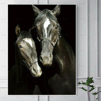 Horse Animal Canvas Painting Wall Art Picture Poster Print Home Decor Decoration