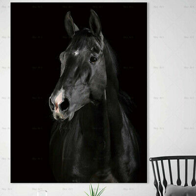 Animal horse Abstract wall art for living room art picture wall canvas painting