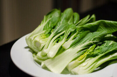 Pak Choi Bok Choy Chinese Cabbage 200 PCS  Garden Health Vegetable Easy To Grow