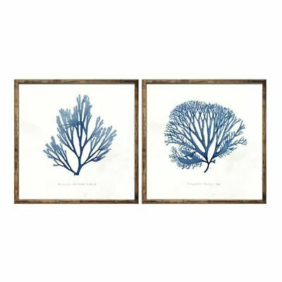 NEW OneWorld Collection Blue Coral Framed Art Print (Set of 2)