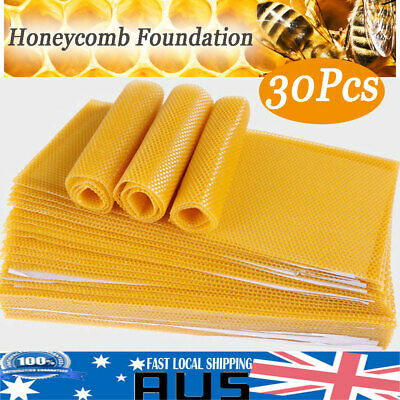 30PCS Beekeeping Honeycomb Foundation Beeswax Nest Box Sheets Beekeeper Tools