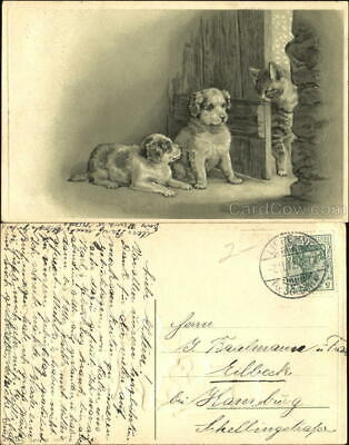1912 A Cat and Two dogs Antique Postcard 5Deutsches Reich stamp Vintage
