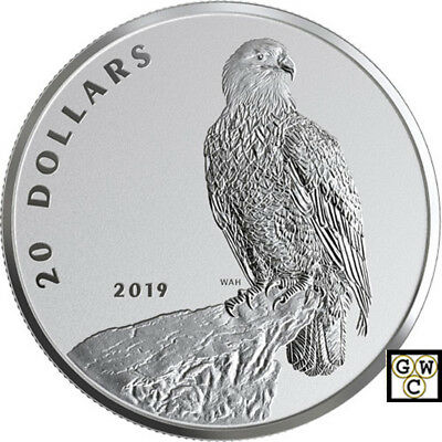 2019 'Bald Eagle-The Valiant One' Reverse-Prf $20 Fine Silver 1oz. Coin(18682)NT