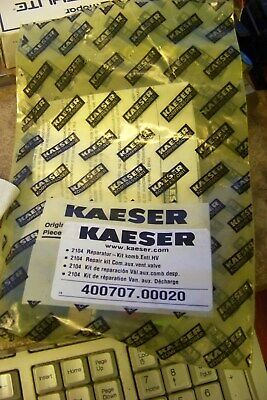 Kaeser 400707.00020 Compressor Part Replacement