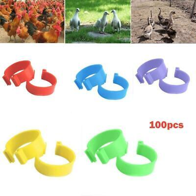 100pcs 16mm Numbered Chicken Hen Leg Bands Clip Rings Pigeon Poultry Bird Duck