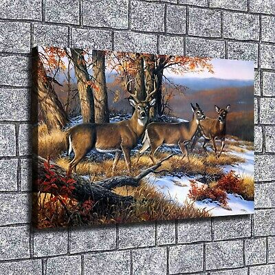 "12""x18"" Deer Animal Paintings HD Canvas prints Home decor Room Wall art Pictures"