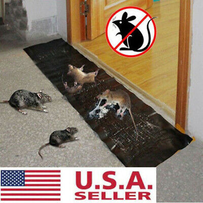 Large Size Mice Mouse Rodent Glue Traps Board Super Sticky Rat Snake Bugs Saf CU