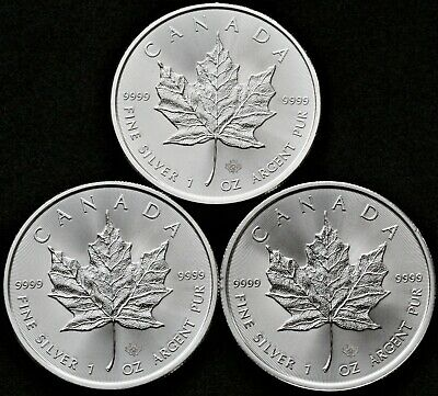 3x 1 oz 2019 Silver Canadian Maple Silver Coins in sleeves MINT / UNCIRCULATED