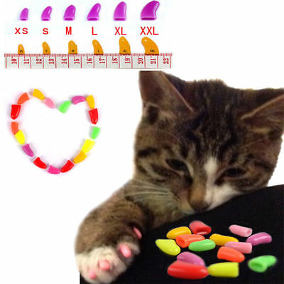20pcs Soft Cat Nail Caps Pet Dog Claw Covers Paw Protective Kitty Decor