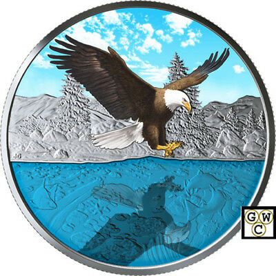 2019'Bald Eagle-Reflections' Enameled Prf $20 Silver Coin 1oz .9999Fine(18651)NT