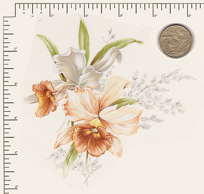 "1 x Ceramic decal. Decoupage Flowers Floral Daffodil Approx. 5 1/4"" x 5 1/4"" #2"