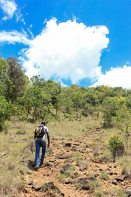 Moderate Hiking and Trekking in Kenya (9 Days) (Price for 2 Travellers)