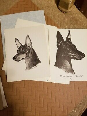 MANCHESTER TERRIER 6 Note Cards With Envelopes. 3 designs