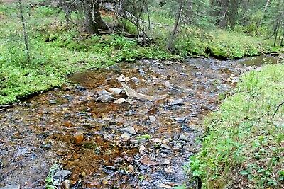 Montana Gold Mining Claim Placer Mine French Creek - Panning Ag Au Dillion MT