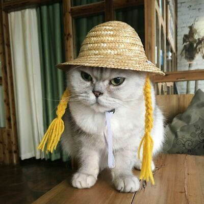Hawaiian Lovely Straw Pet Hat Dog Cat Hat with Braid Pet Outdoor Accessories