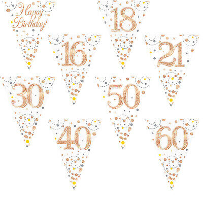 Happy Birthday Party Bunting 11 Flag Rose Gold White Holographic Fizz Age Banner