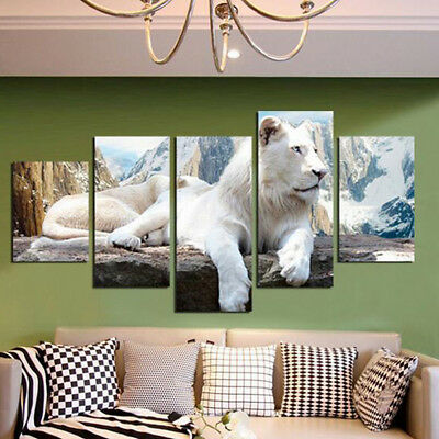 5Pcs White Lion Canvas Print Painting Wall Art Picture Home Room Decor Unframed