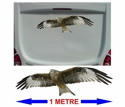 LARGE FLYING RED KITE 1 METRE LONG Decals Stickers for Van Motorhome Camper etc
