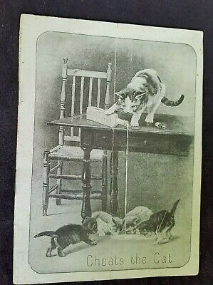 1891 Quack Medicine AD Booklet Are You Well Scott & Bowne NY Cheats The Cat