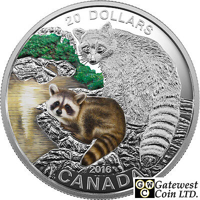 2016 'Raccoon - Baby Animals' Colorized Proof $20 Silver Coin 1oz .9999(17590)NT