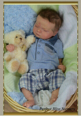 Reborn Baby Boy Realborn Asher Asleep Bountiful Baby from Perfect Bliss Nursery