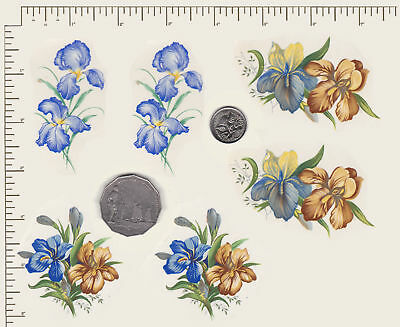 6 x Ceramic decals. Decoupage Iris Flowers Floral 2 of each design. PD833