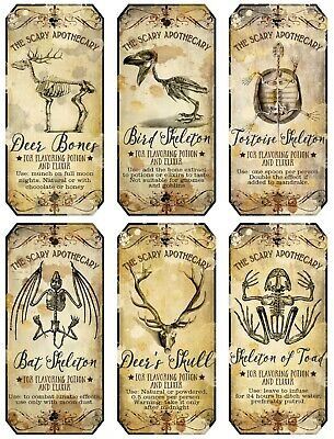 Halloween 6 bottle Labels Skeleton Bones Skull Elixir Scary Apothecary glossy