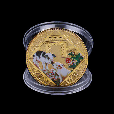 Gold plated Chinese zodiac pig anniversary commemorative coins souvenir coins YL