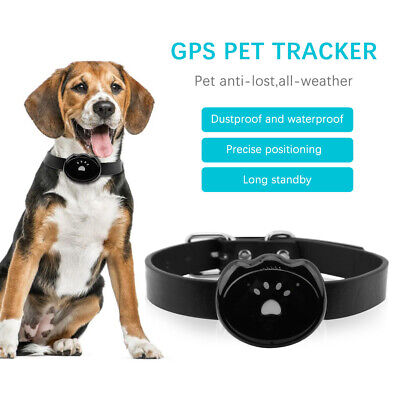 Pet GPS Tracker Dog APP Online Real Time Tracking Locator Necklace Waterproof AA
