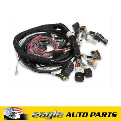 on race car complete wiring harness