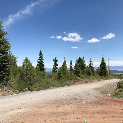 California Land For Sale - Cal Pines .944 Acres With Trees & View - Modoc County