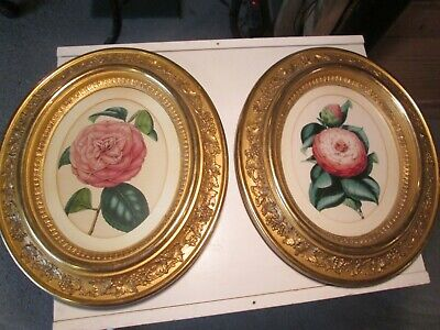 A Pair Of Flower Prints In Antique Oval Gilt Picture Frames Wall Hanging